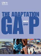 Adaptation Gap Reports